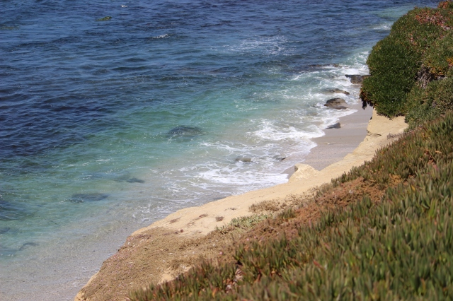serentity off of La Jolla coves